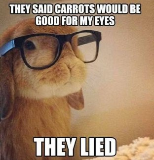 Funny-Glasses-Meme-They-Said-Carrots-Would-Be-Good-For-My-Eyes-Picture